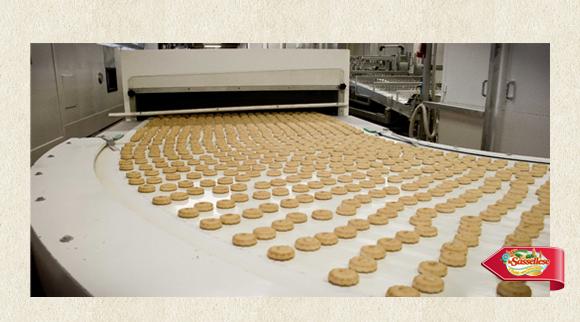 Sassellese in fabbrica canestrello step 2