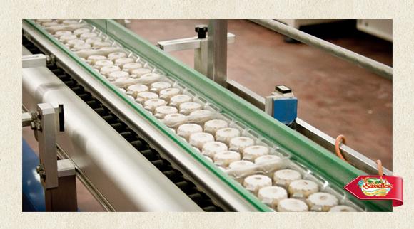 Sassellese in fabbrica canestrello step 5